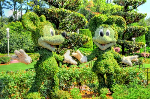 Disney World near Orlando, Florida